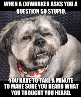 When a coworker asks you a question...