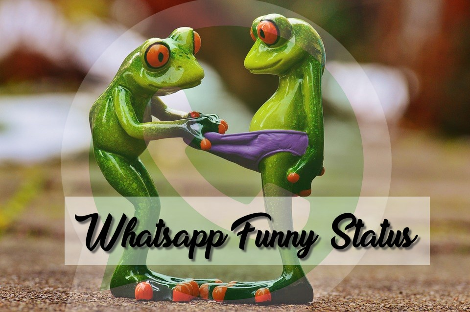 Whatsapp Funny Status In Urdu Laughing Attitude Shayri Sad