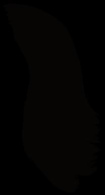 Mujer con pelo negro y ojos oscuro que bellesa - 2 part 6
