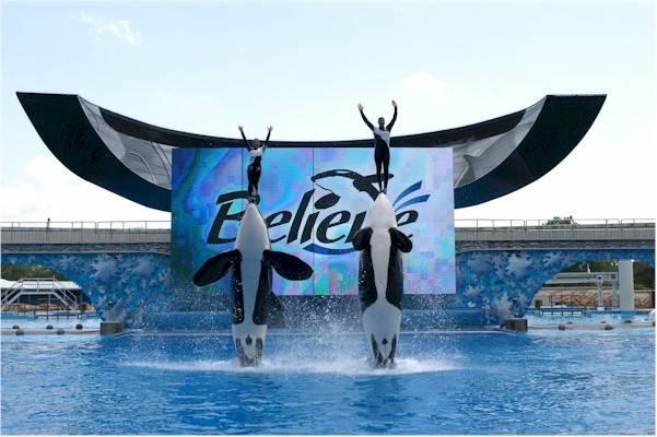 SeaWorld Orlando - Parque aquático