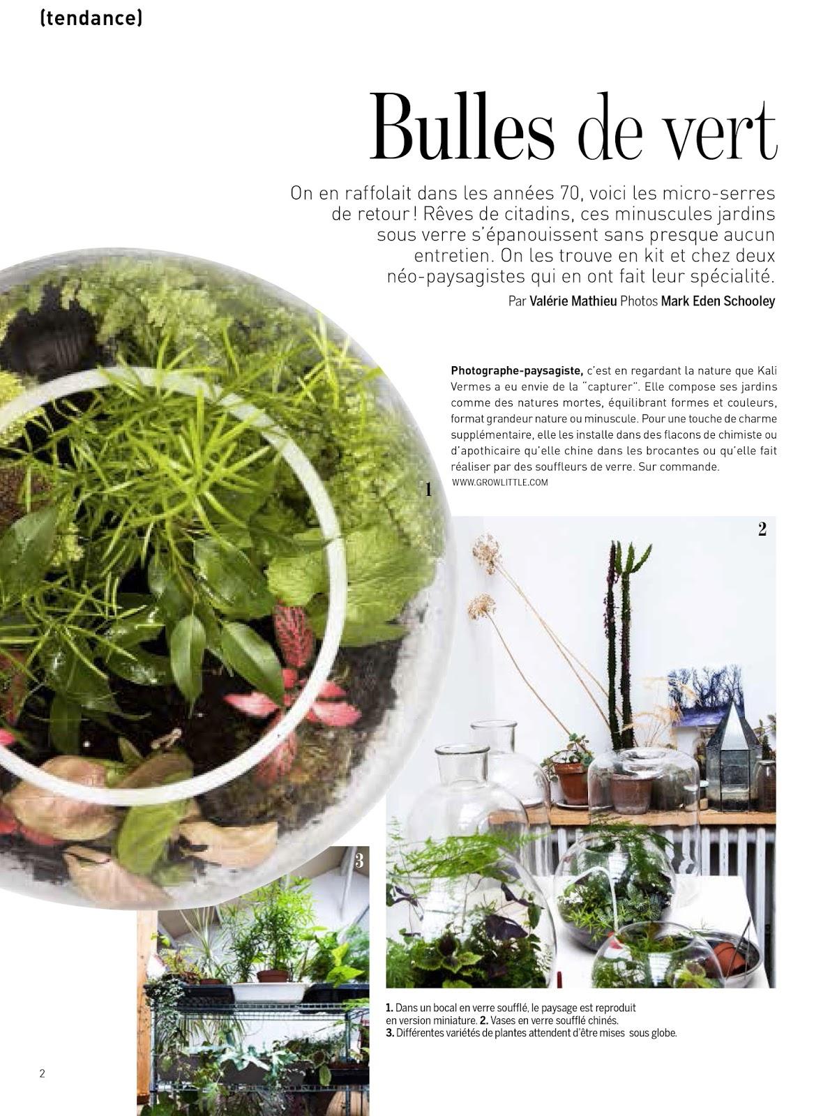 Marie Claire Maison Jardin Recup grow little