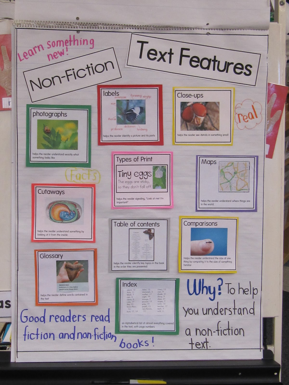 Joyful Learning In Kc Nonfiction Text Features