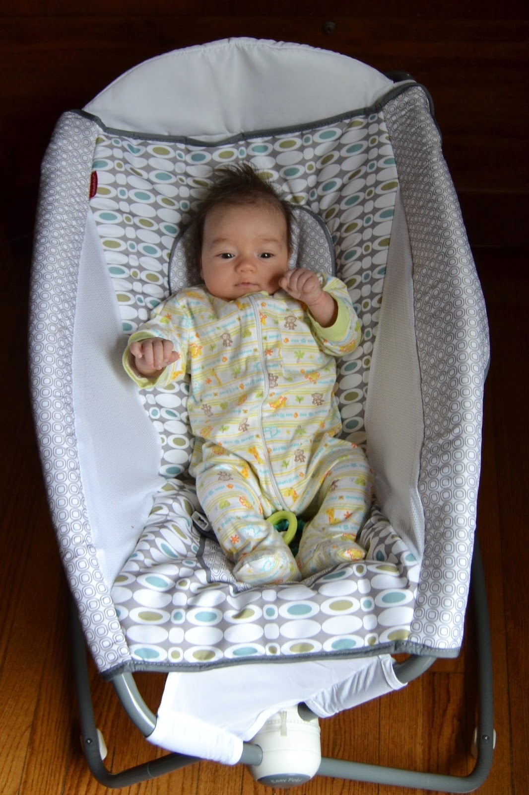 Fisher Price Rock N Play Sleeper Review The
