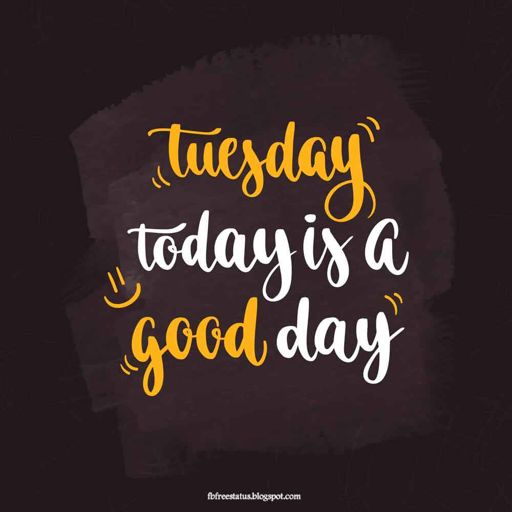 Tuesday today is good day.