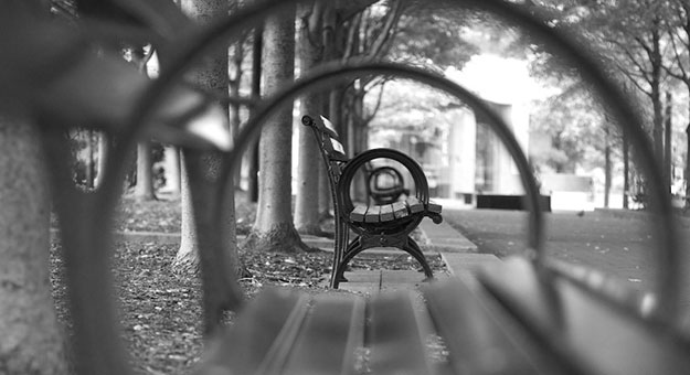قواعد التكوين في التصوير الفوتوغرافي