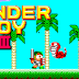 Download Wonder Boy Game For PC Full Version
