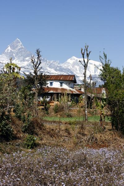 Haus am Annapurna Gebirge in Nepal