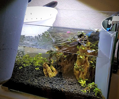 Filling planted tank or aquascape with a colander