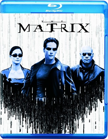 The Matrix 1999 Dual Audio Hindi Bluray Download