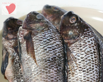 Pinoy Food Recipe Ginataang Tilapia