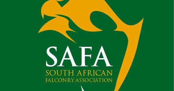 (11) Likes | Tumblr | Falconry, Hawk eagle, African crown  |African Crowned Eagle Falconry
