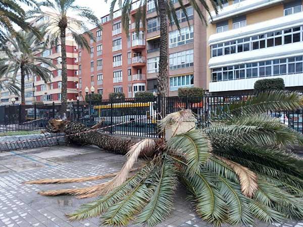 Se da por concluida la alerta por viento en Canarias, viernes 9 febrero