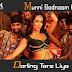 Munni Badnaam Hui / मुन्नी बदनाम हुई / Lyrics In Hindi Dabangg (2010