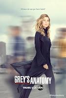 Decimosexta temporada de Grey's Anatomy
