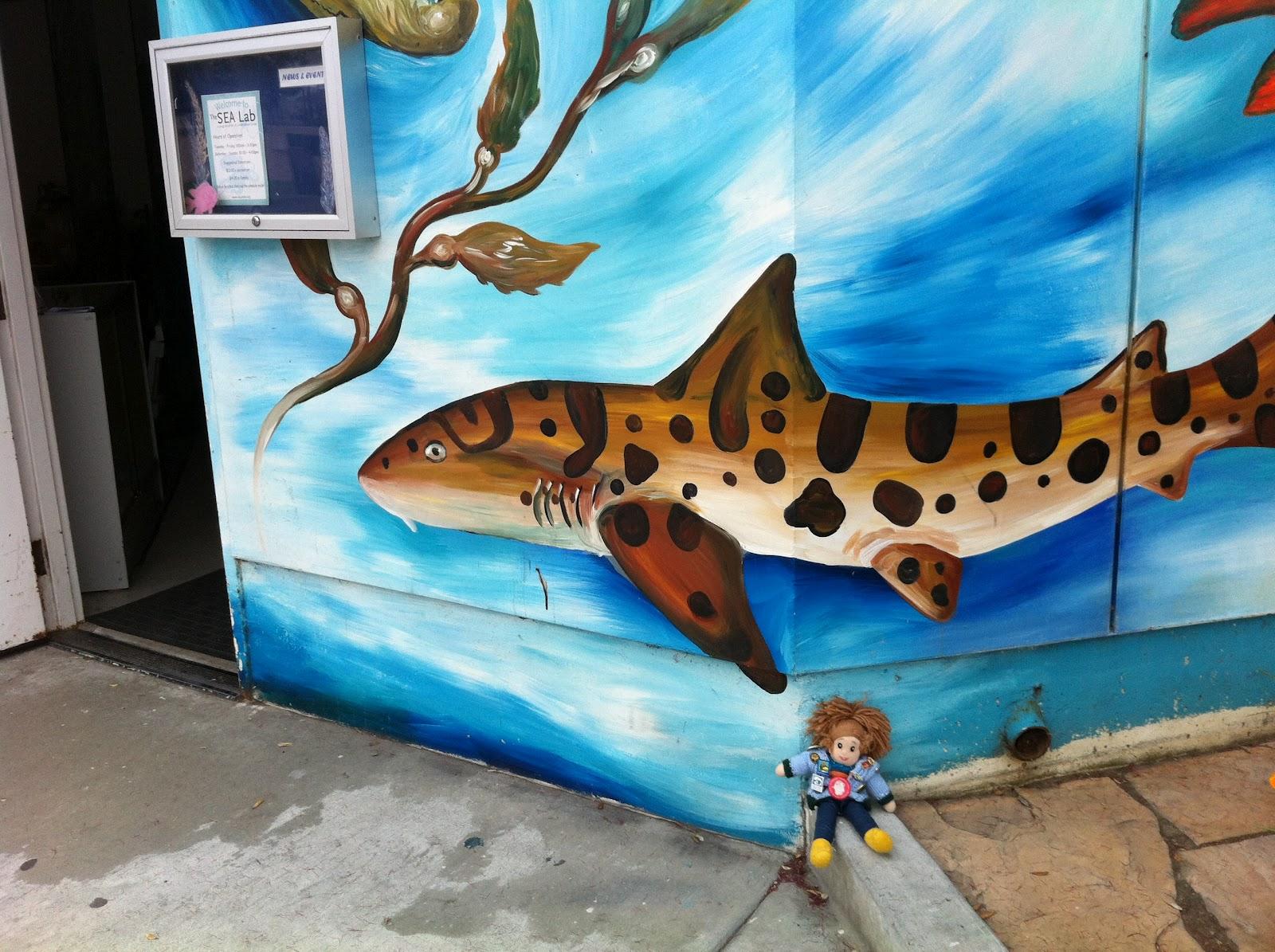 Sea Lab In Redondo Beach
