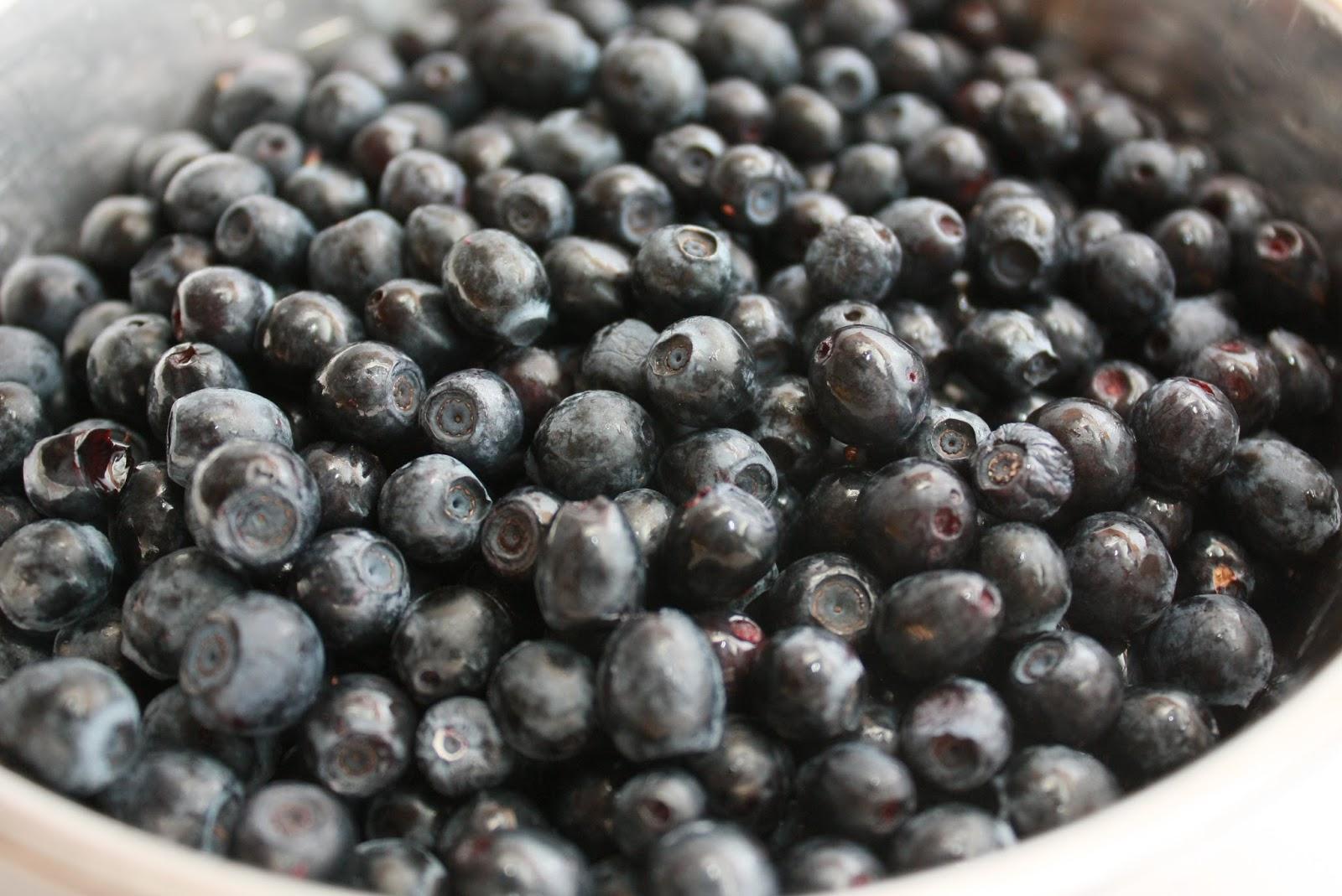 blåbärsmarmelad - recept på matlyckan