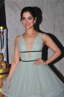 Tamanna sizzling south scope event 017.jpg
