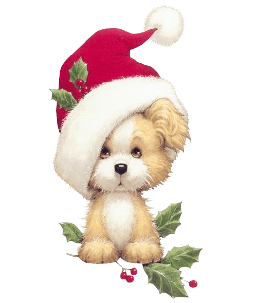 Image Result For Dog Santa Hat