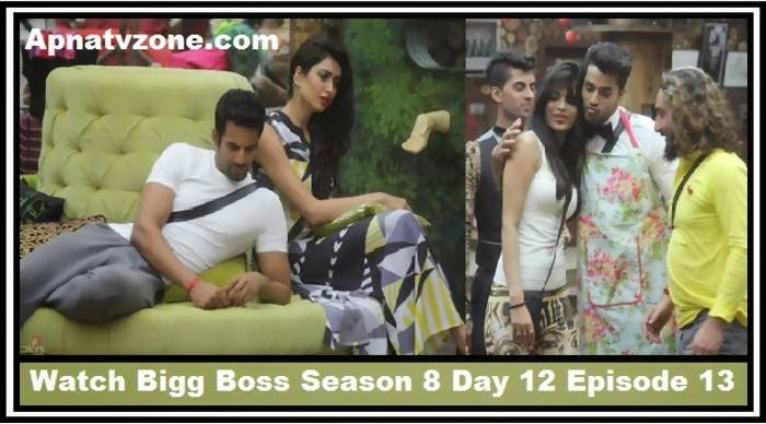 Bigg Boss Hindi Season 8 Wikipedia
