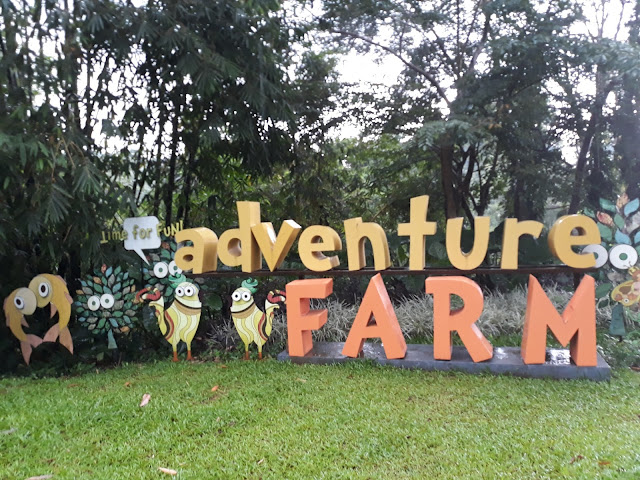adventure farm timberland heights