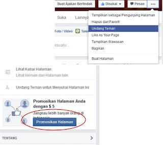 menambah like facebook dengan promosi melalui facebook ads