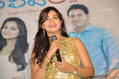 Ameerpetlo audio success meet photos-thumbnail-12