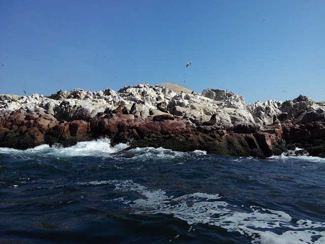 Islas Ballestas Paracas