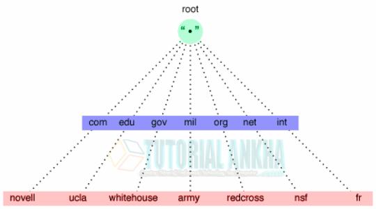 Pembahasan Mengenai DNS dalam Belajar Komputer