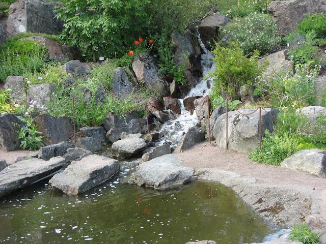 På utflukt til Gøteborgs botaniske Hage - Vannfall i hagen