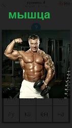 накаченная мышца у мужчины