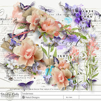 http://shop.scrapbookgraphics.com/tenderness-overlays-and-wordarts.html
