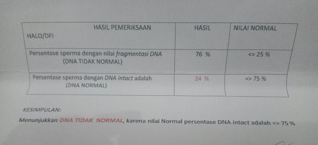 Pemeriksaan Kerusakan DNA Sperma (DNA Fregmentation Index / DFI / HALO Test)