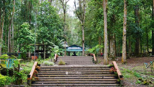 Tahura Bukit Barisan Potensi Wisata Sumatera Utara yang Terabaikan