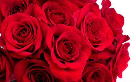 grattis på din dag älskling Bellas väg tillbaka: Grattis Älskling!! grattis på din dag älskling