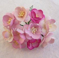 http://przydasiepasjonatypl.shoparena.pl/pl/p/Mix-2-tonowy-rozowy-kwiat-wisni-5-szt./1267