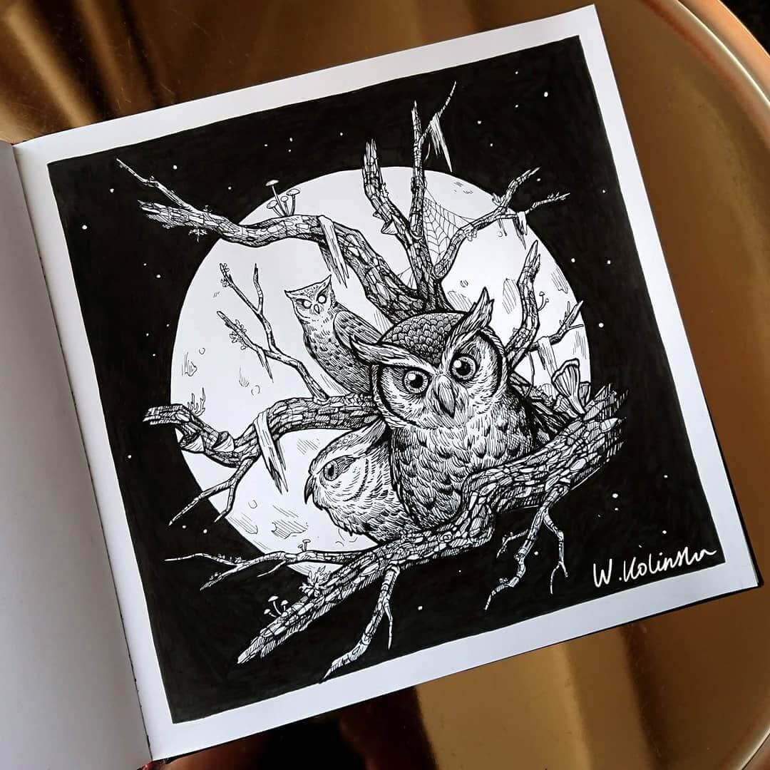 02-Owl-tree-Weronika-Kolinska-Black-and-White-Animal-Ink-Drawings-www-designstack-co