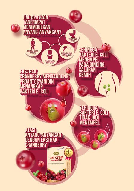 infografis tentang penyebab dan cara mengatasi anyang-anyangan
