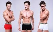Qual seu estilo preferido de cueca?