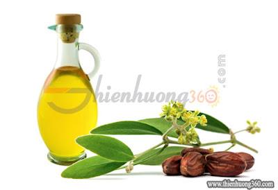Tinh dầu jojoba được ép lấy dầu từ hạt