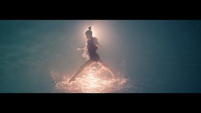Broken Back - Halcyon Birds ( Official Music Video )