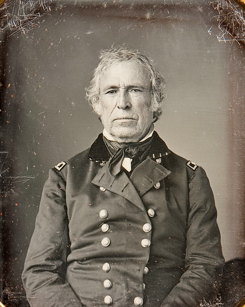 how was zachary taylor able to become president in 1848