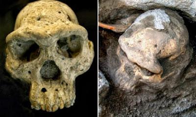 Teljesen átírhatja egy koponya az emberi evolúciót