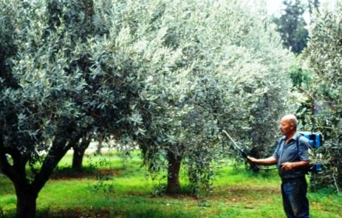 Το Υπουργείο Αγροτικής Ανάπτυξης προχωράει στην πρόσληψη 727 εποχικών αναγκών