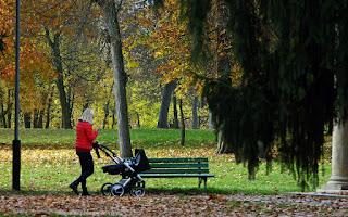 http://fotobabij.blogspot.com/2015/12/smartfon-na-spacerze-w-parku.html