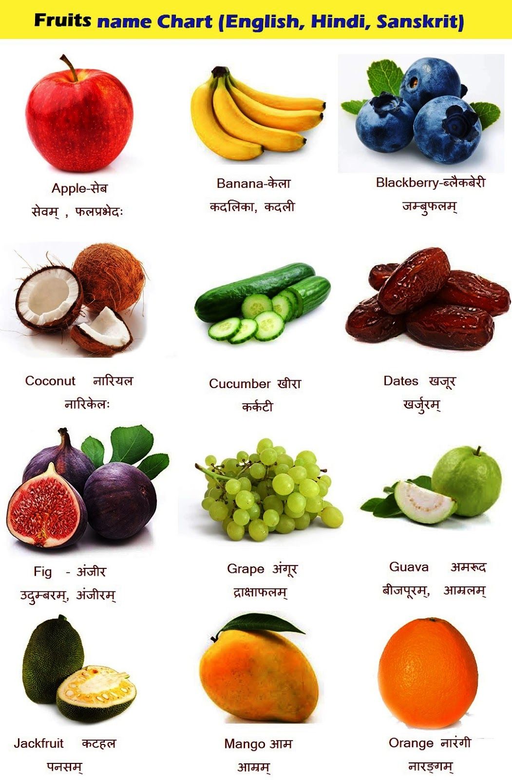 Fruits name in Hindi (falon ke naam), Sanskrit and English