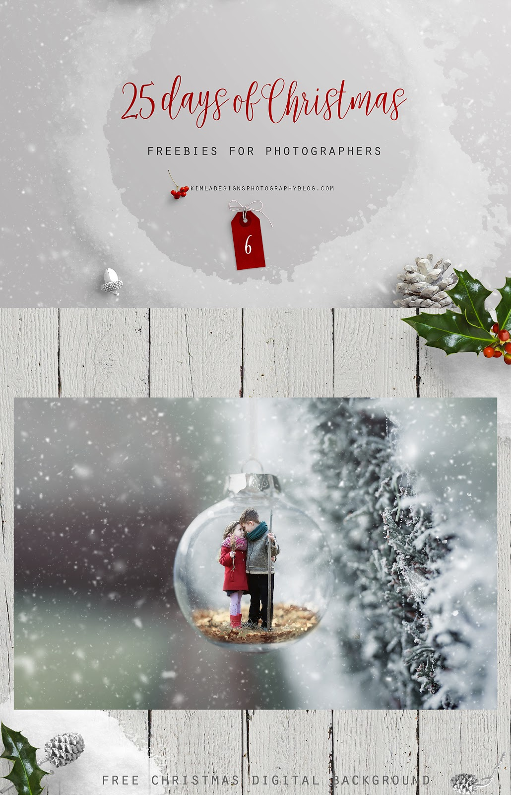 Day 6 of 25 Days of Christmas Freebies for Photographers