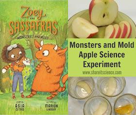 Apple Decomposition Science Experiment