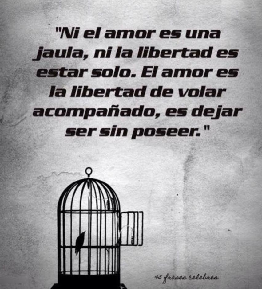 Hermosa Frases Cortas De Libertad Y Amor Mejor Casa Sobre Frases
