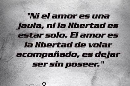 Frases Sobre Amor Y Libertad