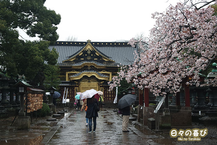 Toshogu Shrine tokyo ueno park